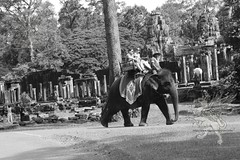 Angkor_Siem Reap_2014_22