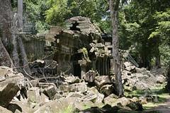 Angkor_Ta Prohm_2014_23