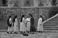 Riunione (FIORE Luigi) Tags: campania avellino santangelodeilombardi muro pietre suditalia suore religione abbaziadelgoleto bianco biancoenero italia vasi scala piante allaperto