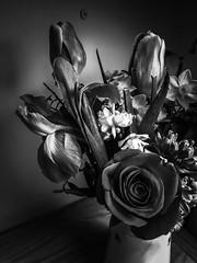 Cut flowers. 14/365 (jenwuk) Tags: project365 cutflowers tulip daffodil flag iris rose blackandwhite