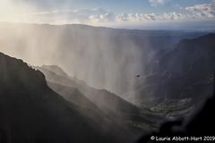Good Morning Waimea_DSF3138-Edit (Laurie2123) Tags: hawaii honeymoon laurieabbotthartphotography laurieturnerphotography laurietakespics odc odc2019 ourdailychallenge