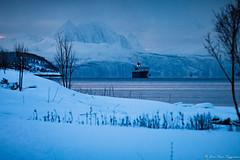 IMG_2726 (jmmuggianu) Tags: hurtigruten norge norvège norway troms arctic arctique hiver neige snow winter tromsø no