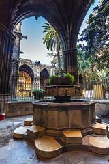Barcelone-143 (bonacherajf) Tags: barcelona barcelone catalogne catalunya espagne spagna cathédrale cloitre