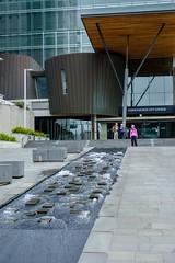 20181225 088 Christchurch walk (scott_in_YYZ) Tags: 2018 christchurch december newzealand summer travel