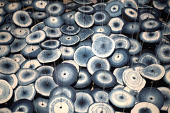 Corals (Rob₊Lee) Tags: circles disk disc corals mushroom abstract round blue threads art installation rings cloth wheels floating island ocean indigo