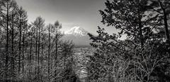 Mount Fuji (-Faisal Aljunied - !!) Tags: faisalaljunied mountfuji blackandwhitelandscape tokyo lakekawaguchiko nature mountain volcano japan
