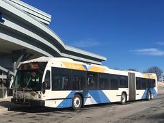 4th Bold 60 Foot (The Halifax Transit Fan!) Tags: articulatedbus novabuslfsartic novabuslfs hfxtransitroute10 hfxtransit743 bridgeterminal bridgebusterminal