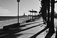 Passeig Marítim (Fnikos) Tags: street road sea water sidewalk shore seashore beach sky skyline cloud city chimenea chimney building construction people tree palmtree shadow bench nature blackandwhite monochrome outdoor