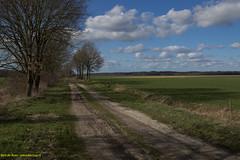 At Spijkerboor Netherlands (Bert de Boer) Tags: bertdeboer at spijkerboor netherlands wwwbertopnl landschapen landscapes luchten landscape nederland nature natural