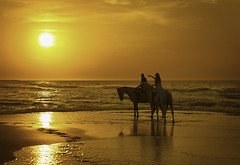 Riders (Pawel Wietecha) Tags: rider sun sunset light orange sea water waves people horse reflection sky travel trip journey beach landscape seascape silhouette color gold ustka poland