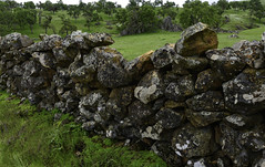 The Stone Walls of Telegraph City Ca. (Nikon Z7) (Siri Photos / Steve Siri) Tags: stevesiri siriphotos telegraphcity ghosttown california ca nikonz7 rockwall rock art artistic z7