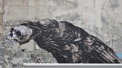Monsieur Qui_3767 passage Saint Sébastien Paris 11 (meuh1246) Tags: streetart paris monsieurqui animaux passagesaintsébastien paris11 corbeau crâne oiseau ericlacan