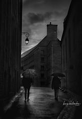 Rain drops... (hedes) Tags: bretagne sony alpha7riii ilce7rm3 55mm18 umbrella gris noiretblanc parapluie pluie pavés