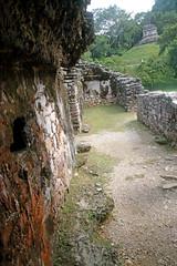 Lakamha Palace Ruins (peterkelly) Tags: digital canon 6d northamerica mexico chiapas palenque palenquenationalpark lakamhapalace wall orange lichen templeofthesun ruins stone maya mayan