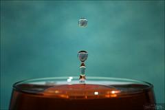 Poc...! (Dany-de-Nice) Tags: macro liquide liquid eau water goutte drop 6d 100m