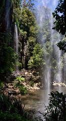 Behind Twin waterfalls (Tatters ✾) Tags: australia brisbane springbrook nationalpark waterfalls stitch