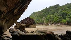 Bako, Sarawak, Malaysia (Daniel Kliza) Tags: borneo malaysia sepilok kinabatangan sarawak sabah malay seafood wildlife kuching kotakinabalu kota kinabalu kk orangutan bako safari proboscis monkey monkeys bear elephant danum valley danumvalley stickyricetravel georgetown penang pig snake frog