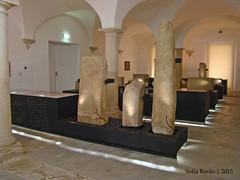 Museu Francisco Tavares Proença Júnior, Castelo Branco 02 (Sofia Barão) Tags: castelo branco beira baixa portugal