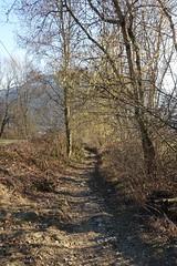Hike to Croix des Esparzales @ Thorens-Glières (*_*) Tags: europe france hautesavoie 74 filliere thorensglieres thorens savoie hiking mountain montagne nature randonnée walk marche february winter hiver 2019 bornes afternoon