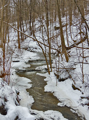 Gillespie Run (George Neat) Tags: gillespie run creek water stream snow elizabeth township twp allegheny county nature woods trees scenic scenery landscapes pa pennsylvania patriotportraits neatroadtrips laurelhighlands outside