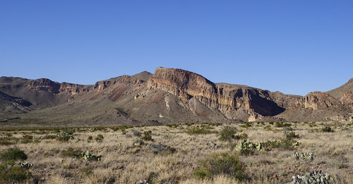 Big Bend NP Landscape