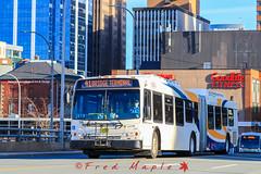 IMG_4737 (1fredmaple) Tags: newflyerde60lfr articulatedbus downtownhalifax hfxtransitroute41 hfxtransit715 halifaxmetrotransit
