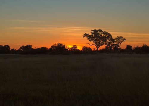 Sunset, Okavango Delta