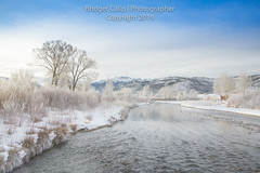 Frosty Morn on the Uncompaghre River (Bridget Calip - Alluring Images) Tags: 2019 alluringimagescolorado bridgetcalip colorado ouraycounty ridgway rockymountains sanjuanmountains uncompaghrenationalforest uncompaghreriver whitehousemountain winterwonderland allrightsreserved blueskies cold copyrighted fog freshsnow frozen hoarfrost ice