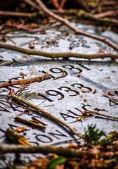 1933 (DJ Fotographic) Tags: grave cemetery canada britishcolumbia surrey d90 afs 55300vr nikkor nikon markinsm10 gt3931 gitzo