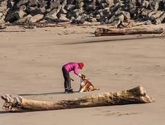 Lady and Her Dog (marvhimmel) Tags: general or logs dog winchesterbay lady driftwood beach seaside