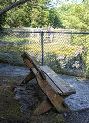 A Place To Cool Down-HBM! (☼Jo Zimny Photos☼) Tags: benchmonday bench fence shade people taughannockfallsstatepark