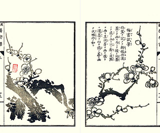 (Japanese Flower and Bird Art Profile Picture
