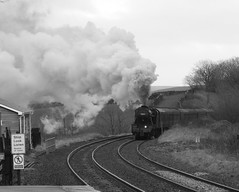 Approaching Horton (Jacobite52) Tags: 8f 48151 lms railway train steam wcrc settleandcarlislerailway settlecarlisle mainlinesteam