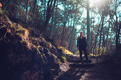 KRIS8029 (Chris.Heart) Tags: erdő buda budapest túra természet forest nature hiking