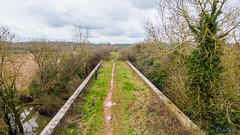 Marton Disused Railway 18th March 2019 (boddle (Steve Hart)) Tags: marton disused railway 18th march 2019 steve hart boddle steven bruce wyke road wyken coventry united kingdon england great britain southam unitedkingdom gb wild wilds wildlife life nature natural bird birds flowers flower fungii fungus insect insects spiders butterfly moth butterflies moths creepy crawley winter spring summer autumn seasons sunset weather sun sky cloud clouds panoramic landscape arial