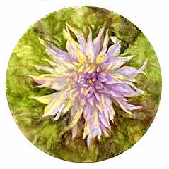 Semi-Cactus Dahlia (molossus, who says Life Imitates Doodles) Tags: flower cactus dahlia watercolor