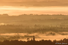 Golden colors (darko.jakovac) Tags: nikon d750 nikond750 sigma 150600 sigma150600 contemporary telephoto dolenjska slovenija slovenia slowenien discover explore trip travel traveling relax view viewpoint ngc outdoor outdoors outside hiking adventure perspective activities roam visit environment explorers ecological nature landscape scenery scenic idyllic beauty beautiful season seasonal unique perfect superb magnificient stunning impressions outstanding popular perfection colors colorful postcard wallpapper countryside rural belakrajina semič zlato gold golden morning fog fogy mist misty natural naturephoro naturephoto