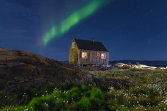 A Cabin and the Aurora (Iurie Belegurschi www.iceland-photo-tours.com) Tags: adventure arctic aurora auroraborealis beautiful blue coastal dreamscape earth enchanting fineart fineartlandscape fineartphotography fineartphotos finearticeland guidedphotographyworkshops guidedphotographytour guidedtoursiceland guidedtoursiniceland icelandphototours iuriebelegurschi landscape landscapephoto landscapephotography landscapes landofthemidnightsun landscapephotos longexposure nature night nightsky nightscape northernlights nighscape naturalphenomenon outdoor outdoors phototour phototours photographyiniceland photographyworkshopsiniceland tranquil serene sky tours travel travelphotography view workshop workshops greenland cabin wooden house light lighting ladder grass stars starry starrynight starrysky