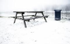 This ain't no picnic (Ingeborg Ruyken) Tags: sneeuw morning sluisempel maximakanaal empel natuurfotografie kanaalpark picnicktafel mist empelsedijk instagram fog 500pxs ochtend flickr snow