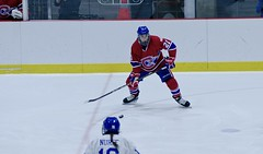 fullsizeoutput_f5 (c.szto) Tags: les canadiennes womens hockey cwhl toronto furies