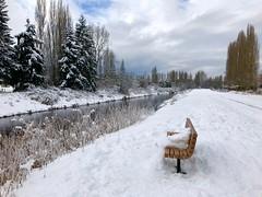 Resting Snow (nansiejo) Tags: winter park outdoorphotography landscape bench snow river sammamishriver