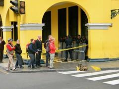 Peru 1 051 (burbadj) Tags: peru dog lima crosswalk peligro