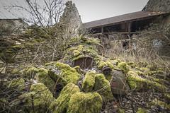 _DSC0194 (Foto-Runner) Tags: urbex lost decay abandonné épave citroen ruine rouille mousse