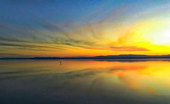 Mirror Light California (moonjazz) Tags: panorama california landscape photography light reflection saltonsea evening color blues orange clouds canon horizon daytrip travel amazing wide sun brilliant bright eternity wilderness water birds seeing mirror calm flat serene peace still