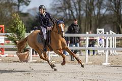 IMG_9635_20190310 (fredpiv) Tags: harasdejardyasponeyelite10mars2019 canoneos5dmarkiv canonef70200mmf28lisiiusm cheval horse jumping canonfrance