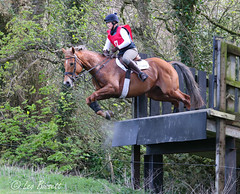 14/52 The Take off (Leo Bissett) Tags: horse jump equine equestrian sport ireland