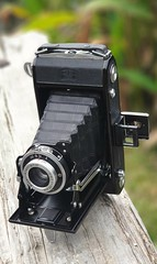 Pre war Zeiss Ikon Nettar. Image take on this camera https://www.flickr.com/photos/77437968@N00/46658674585/in/dateposted / (adamnsinger) Tags: zeiss ikon nettar pre war