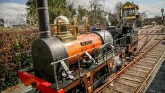 Steam locomotive de Arend (Ramireziblog) Tags: verleden past utrecht treinmuseum rails train trein stoom locomotief locomotive steam