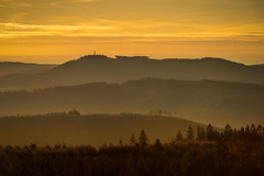 forest series #203 (Stefan A. Schmidt) Tags: warstein nordrheinwestfalen deutschland de forest germany pentaxart landscape