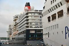 Queen Elizabeth en Aurora (Hugo Sluimer) Tags: cruiseship cruise cruises cruiser cruiseportamsterdam amsterdam noordholland nederland holland cruiseterminal cruiseschip nikon nikond500 d500